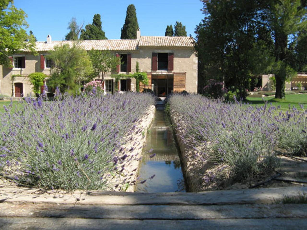 Saint r my de provence alpilles for Entretien jardin st remy de provence