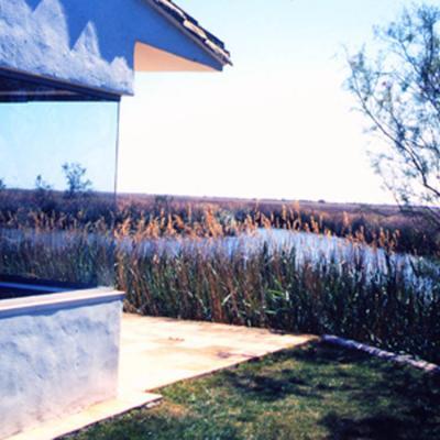 Une vue sur les marais... fenêtre contemporaine en absence de toute armature